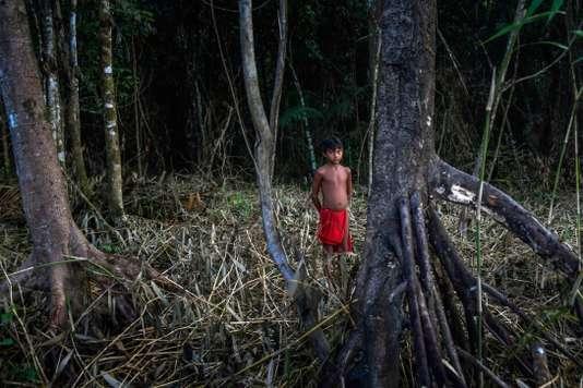 L'ONU veut renforcer les droits environnementaux