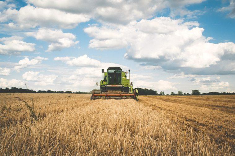 L'intelligence artificielle va-t-elle révolutionner l'agriculture ?