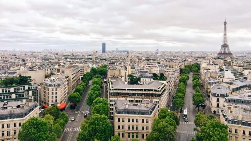 Les «forêts urbaines», essentielles aux villes de demain