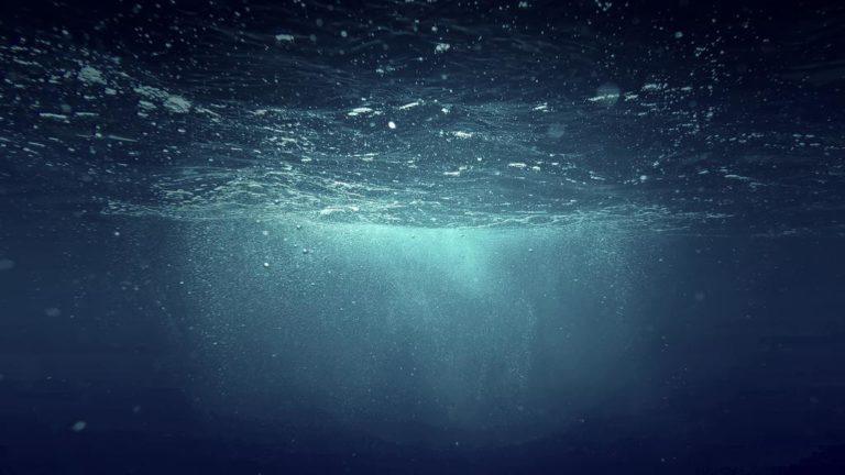 «Pire que ce qu'on craignait» : des chercheurs détectent une zone morte immense dans les eaux du golfe d'Oman