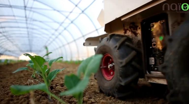 VIDEO : Naïo Technologies ou quand la robotique se met au service de l'agriculture.