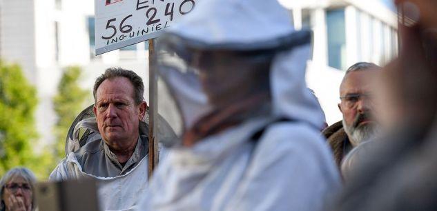 Les apiculteurs se mobilisent pour demander un plan de soutien