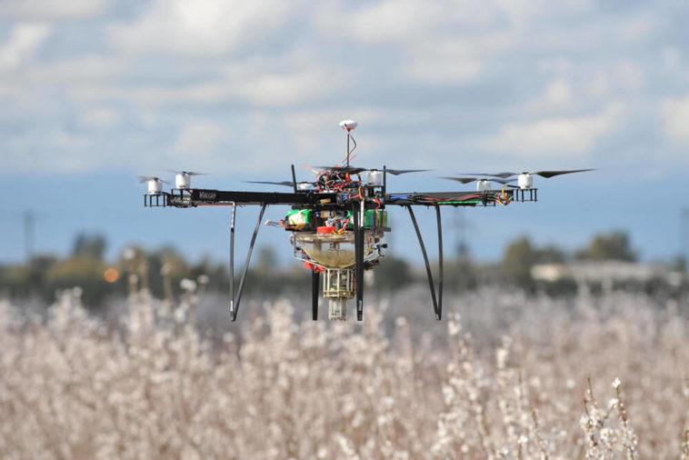 Un drone pollinisateur plus performant que les abeilles ?