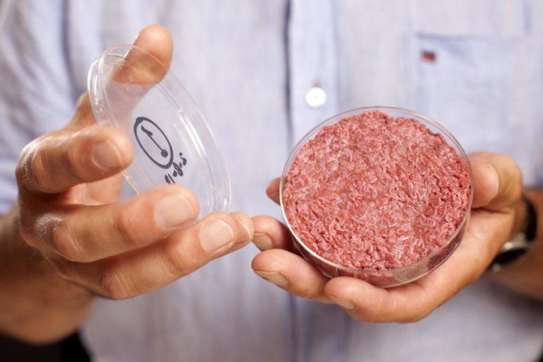 Bell Food se positionne sur le créneau de la viande artificielle
