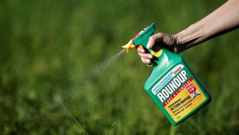 Procès Monsanto. Son propriétaire Bayer continue à défendre le glyphosate