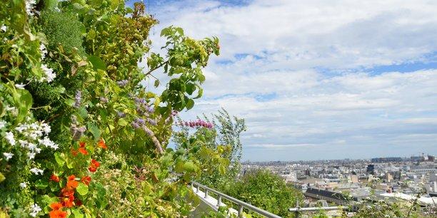 «Sous les fraises», quand l'agriculture urbaine sème et veut essaimer