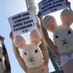 «Cash Investigation» fait réagir : «S'engager à ne pas porter de fourrure envoie un message fort aux marques»
