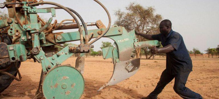 Afrique: la FAO et l'UA recommandent une mécanisation durable de l'agriculture pour la rendre plus productive