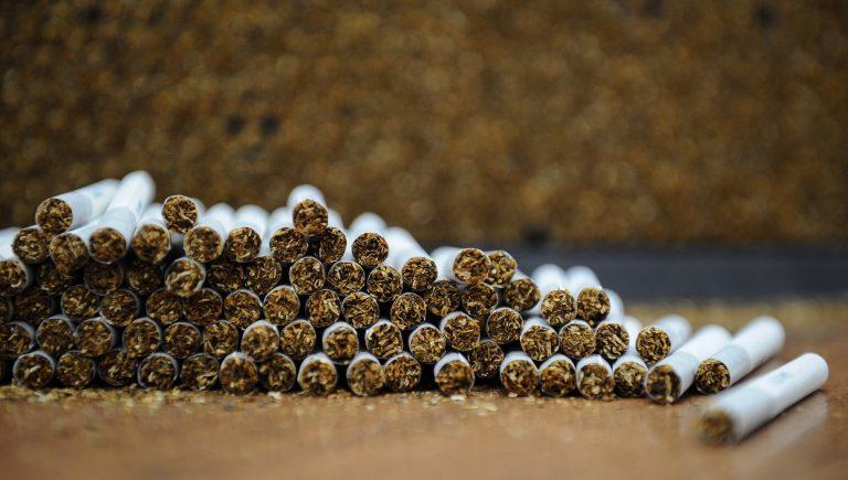 Déforestation, épuisement des sols, pollution de l'eau, travail des enfants, le tabac ne nuit pas qu'à la sante