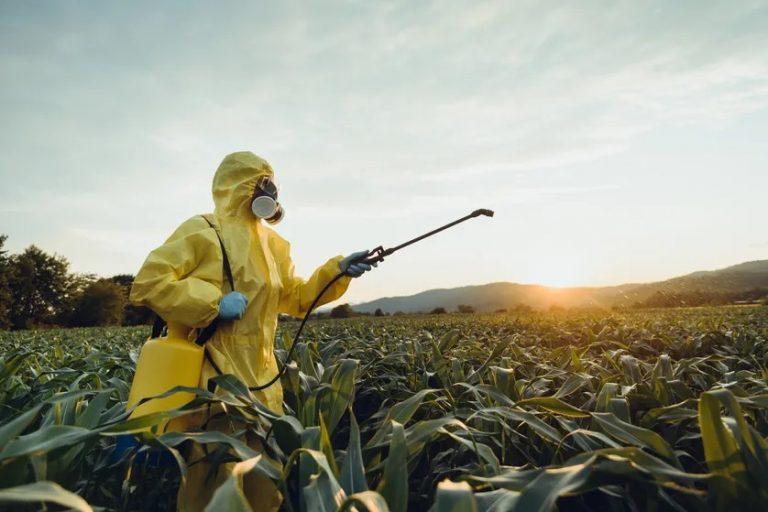 Un monde sans pesticides