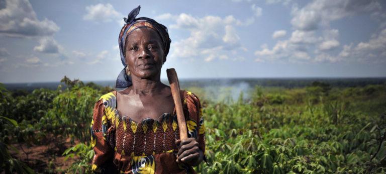 L'ONU se félicite de l'adoption de la Déclaration sur les droits des paysans