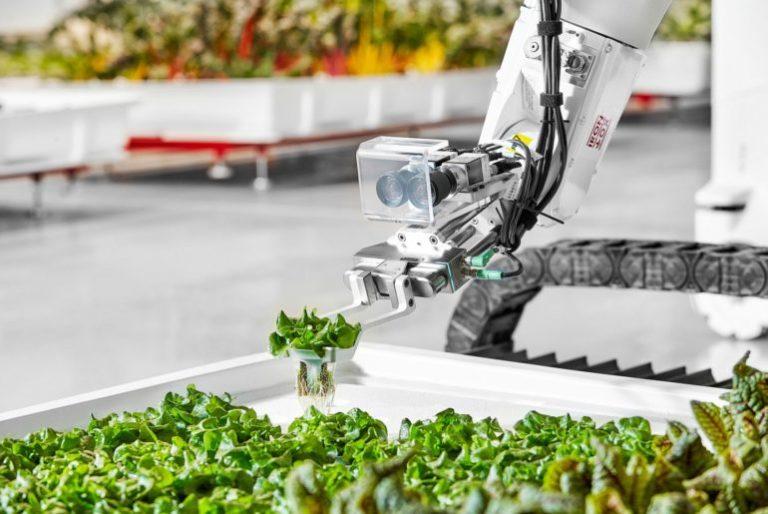 TECHNOLOGIE Iron Ox, vers une ferme fonctionnelle sans travailleurs humains, avec des robots