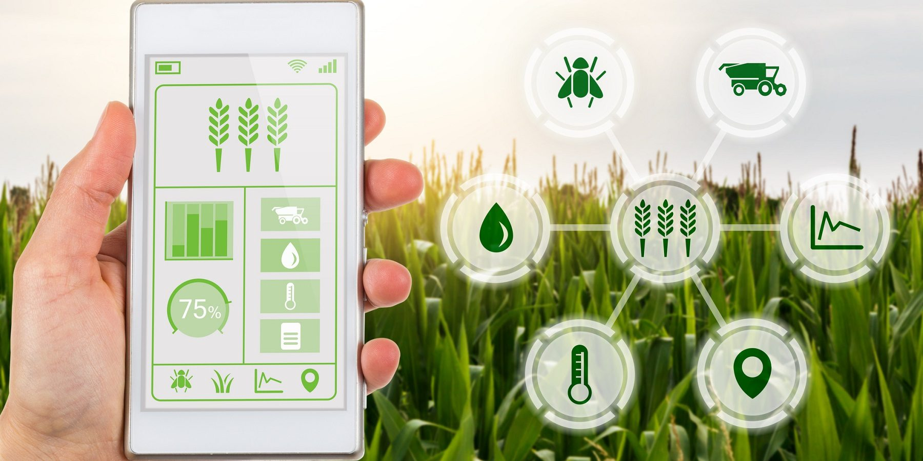 L'agriculture du futur carbure au Big Data