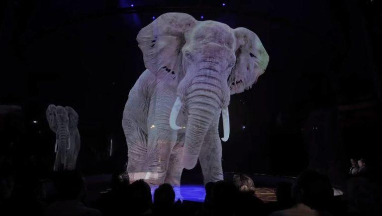 En Allemagne, un cirque remplace les animaux par des hologrammes