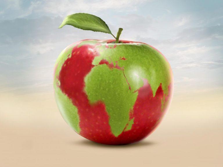 Sauver la planète et notre avenir : des experts appellent à une révolution alimentaire mondiale