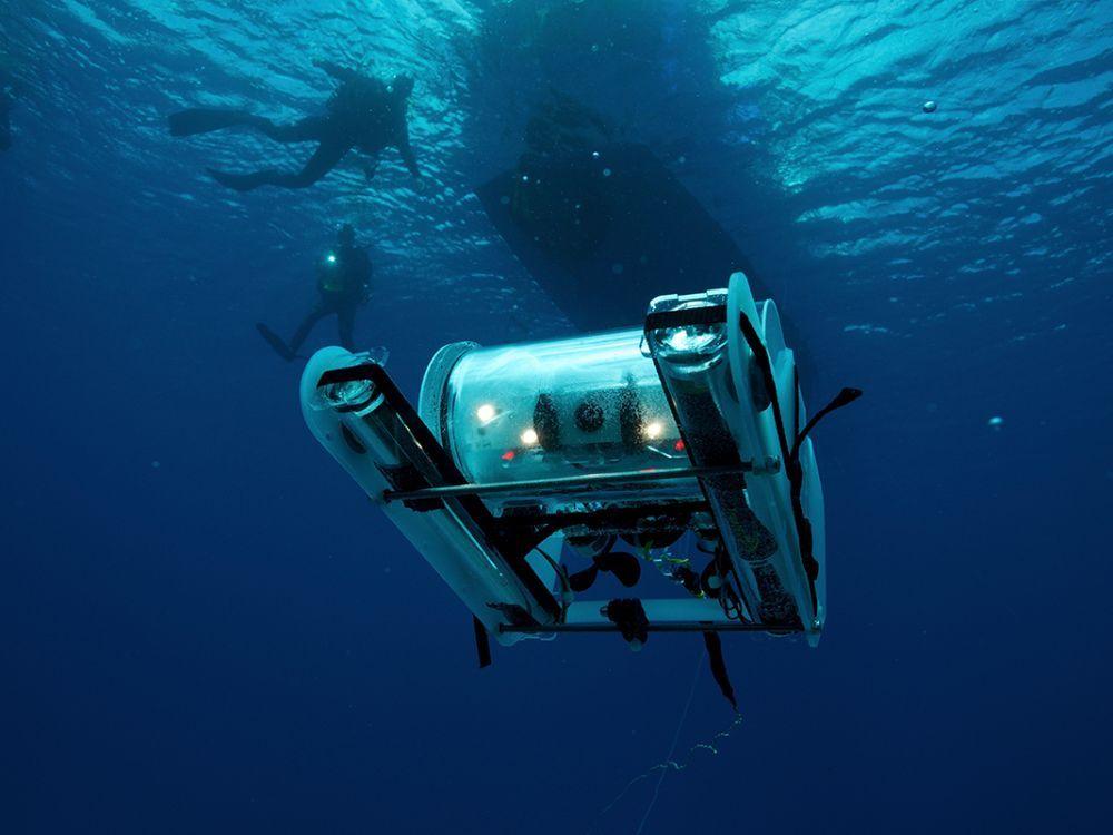 Pour faciliter l'exploration sous-marine, des batteries qui se rechargent seules grâce aux… excréments de poisson