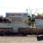 Actes de cruauté sur des animaux : les images de l'abattoir d'Alès sont «hélas très courantes», raconte un vétérinaire