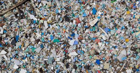 Alerte : le tourbillon de déchets dans le Pacifique est plus grand que tout ce qu'on aurait imaginé