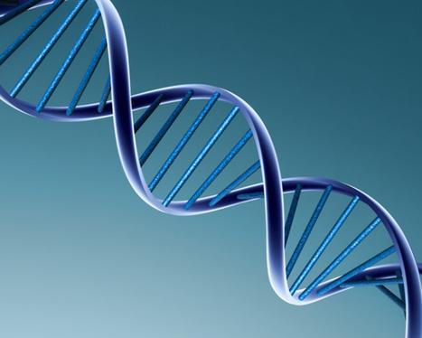 Aux États-Unis, des chercheurs se lancent dans la fabrication d'un génome humain artificiel