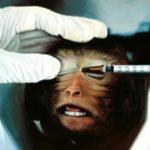 Bientôt la fin de l'absurde expérimentation animale en Europe?
