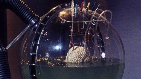 Ces scientifiques très sérieux annoncent avoir « réactivé les fonctions cognitives » de cerveaux morts