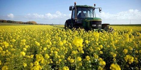 Cofarming : quand la «sharing economy» bouscule le monde agricole