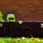 Condamnés à 3.000 euros pour les coassements de leurs grenouilles