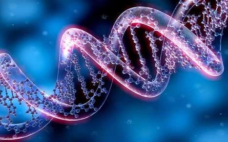 CRISPR-Cas9 : les ciseaux génétiques sont-ils dangereux ?