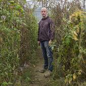 Dans la Drôme, des bataillons d'insectes pour remplacer les pesticides