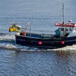 Depuis 10 ans, la pêche durable progresse de 35 % par an