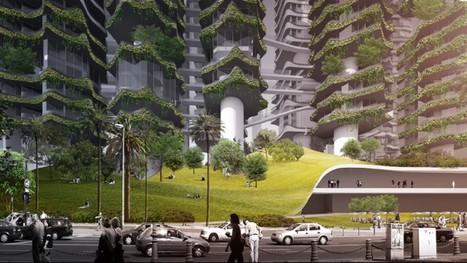 « Arbre » dans Thématiques >> Urbanisme