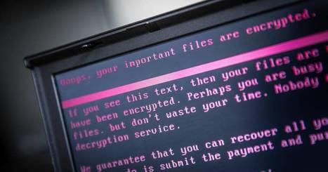 Des hackers lèvent une armée d'objets connectés pour une cyberattaque mondiale