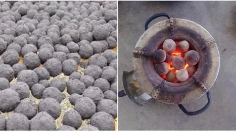 Des Kényans commencent à cuisiner avec de l'énergie à base… d'excréments
