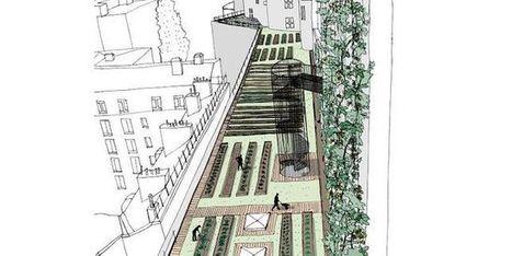 Des légumes, des poissons et du houblon cultivés sur les toits ou dans les parkings de Paris