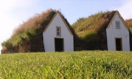 Des toits végétaux pour tous les goûts