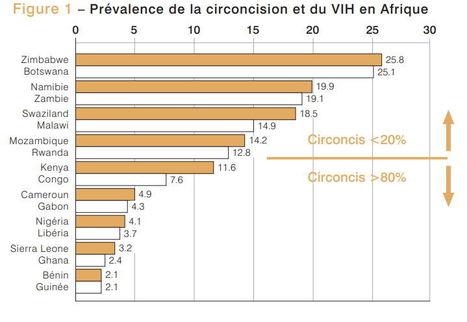 DOSSIER D'INFORMATION SUR LA CIRCONCISION ET LA PRÉVENTION DU VIH