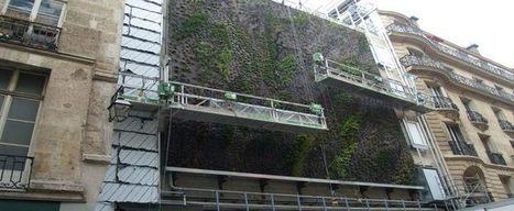 Energie: Paris va rénover un arrondissement complet
