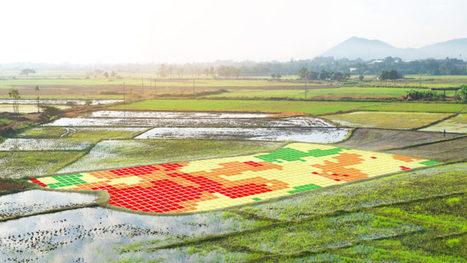 Hogan mise sur l'agriculture de précision dans la prochaine PAC