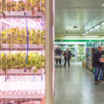 Inédit : grâce à sa serre verticale, ce supermarché courcircuite tous les intermédiaires