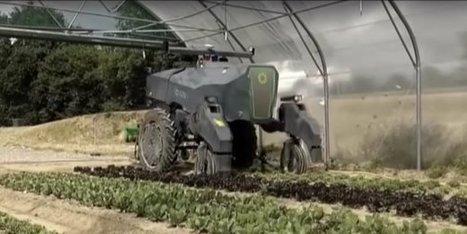 """""""La robotisation induit un changement radical dans la configuration de la ferme"""""""