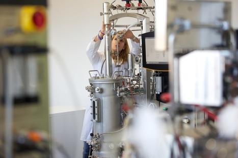 Le Français Deinove enflamme la Bourse avec ses molécules cosmétiques « bio »