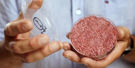 Le plan marketing pour vous faire acheter de la future viande artificielle