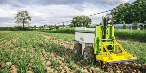 Le pôle Agri Sud-Ouest Innovation veut développer «la ferme du futur»