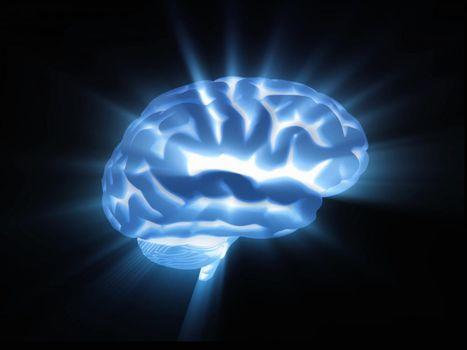 Les cellules souches de l'hypothalamus, un antidote contre le vieillissement ?