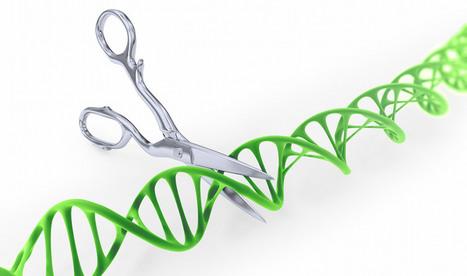 Les sauts indésirables de CRISPR-Cas9