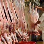 Maltraitance animale : 85% des Français favorables à l'installation de vidéosurveillances dans les abattoirs