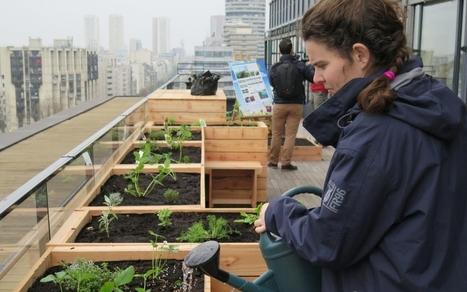 Paris va devenir un grand jardin