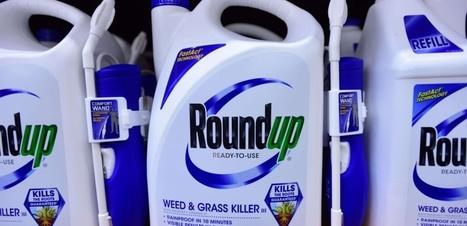 Roundup : les députés favorables à son renouvellement