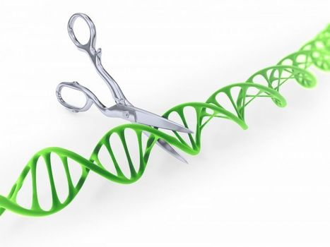 Un biohacker tente de devenir un surhomme en modifiant son ADN