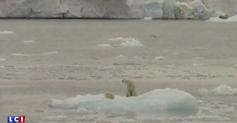 VIDÉO – Arctique : les images inquiétantes de la fonte des glaces vue de l'espace par la Nasa